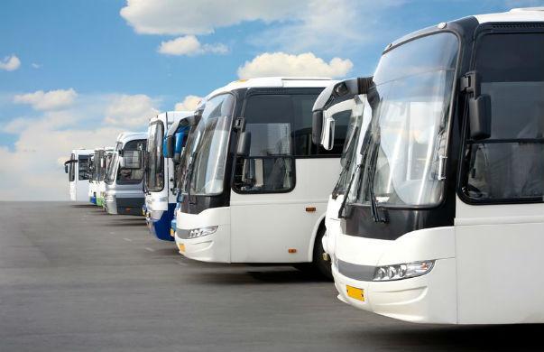 אפיקים תחבורה ציבורית